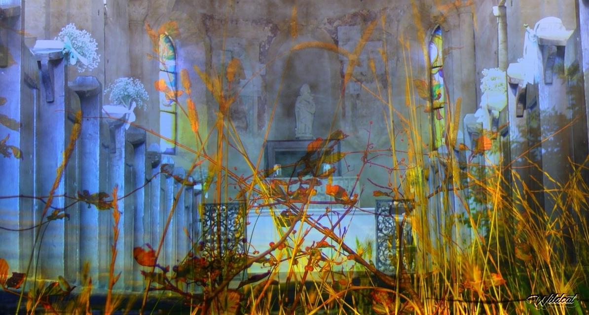 Notre Dame des Champs